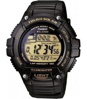 Casio WS2209AVDF