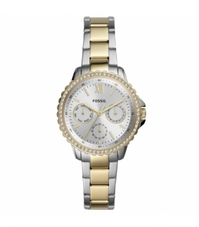 Fossil FES4784